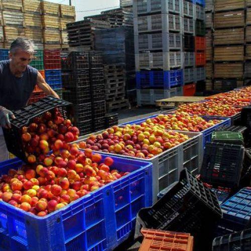 """Φρ. Καρασαρλίδου: """"Ενημέρωση στους ροδακινοπαραγωγούς για αποζημιώσεις και ενισχύσεις"""""""