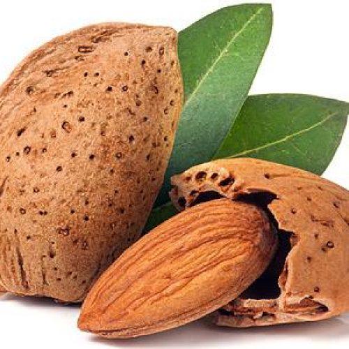 Έρευνα: Οι ξηροί καρποί βοηθούν στην απώλεια κιλών