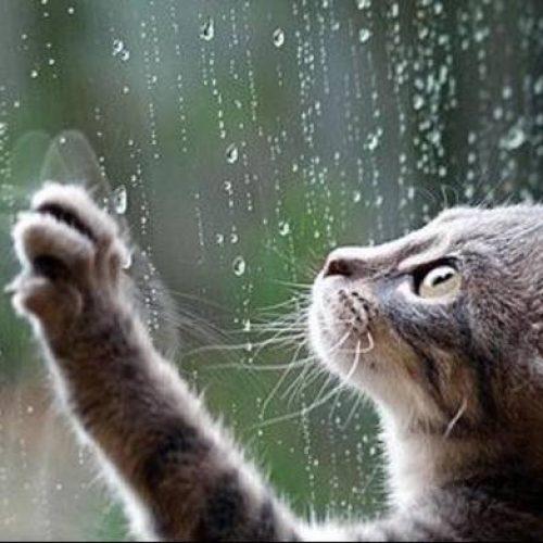 Επιδείνωση του καιρού  για αύριο Σάββατο 7 Οτωβρίου προβλέπει η ΕΜΥ