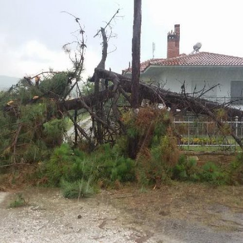 Υποβολή αιτήσεων για ζημίες από πλημμύρες στο Δήμο Βέροιας