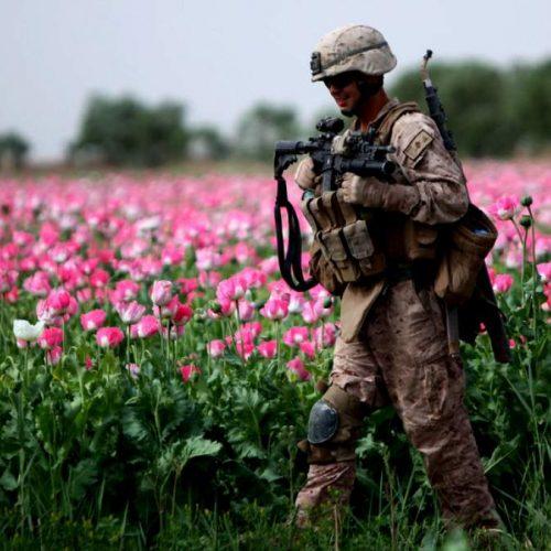 Ο πόλεμος του οπίου και η μπίζνα του πολέμου