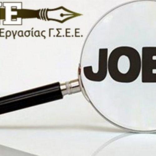 """Δράση από το ΙΝΕ ΓΣΕΕ σχετικά με """"Τεχνικές πλοήγησης στην Αγορά Εργασίας:  Βιογραφικό Σημείωμα"""""""