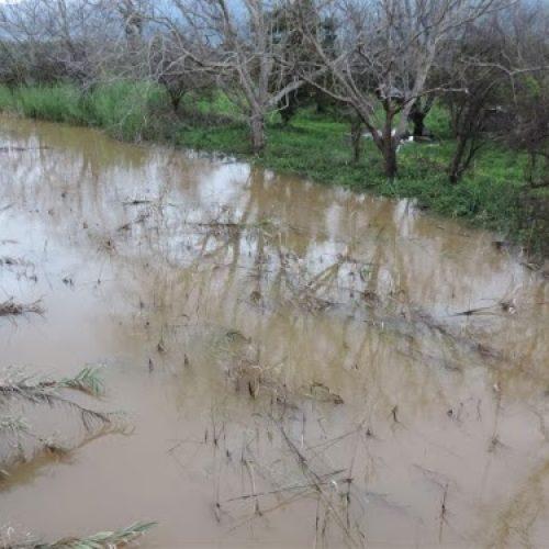 Δηλώσεις αγροτών για τις ζημιές από πλημμύρα στο Δήμο Βέροιας