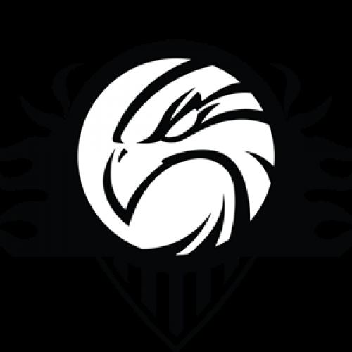 Μπάσκετ: Αλλαγή ημέρας και έδρας για την αναμέτρηση των Αετών Βέροιας