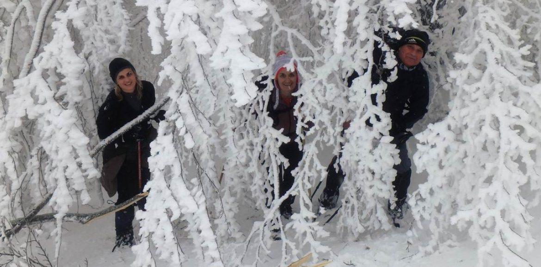 """Η Ορειβατική Ομάδα Βέροιας """"Τοτός"""" στη μαγευτική ομορφιά του χιονισμένου Βέρμιου"""