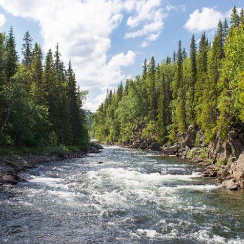 """""""Το ποτάμι δεν γυρίζει πίσω"""" γράφει ο Δημήτρης Βύζας"""