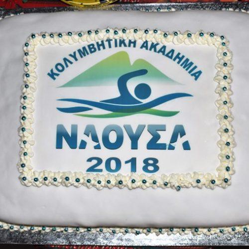 """Κοπή βασιλόπιτας και βραβεύσεις από την Κολυμβητική Ακαδημία """"Νάουσα"""""""