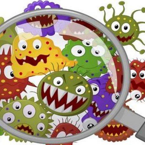 Τα μικρόβια και οι πολλοί μικροί μας φίλοι