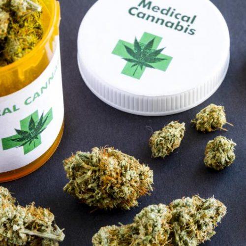 """Τ.E. Ημαθίας του ΚΚΕ: Δούρειος Ιππος για τη νομιμοποίηση χρήσης των ναρκωτικών  η καλλιέργεια """"ιατρικής - φαρμακευτικής"""" κάνναβης"""
