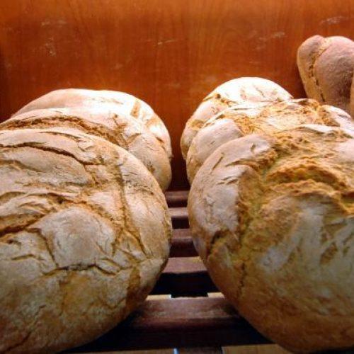 Αγωνιστική Κίνηση Αρτοποιών: Με το πολυνομοσχέδιο βγάζουν εκτός αγοράς τα μικρά αρτοποιεία