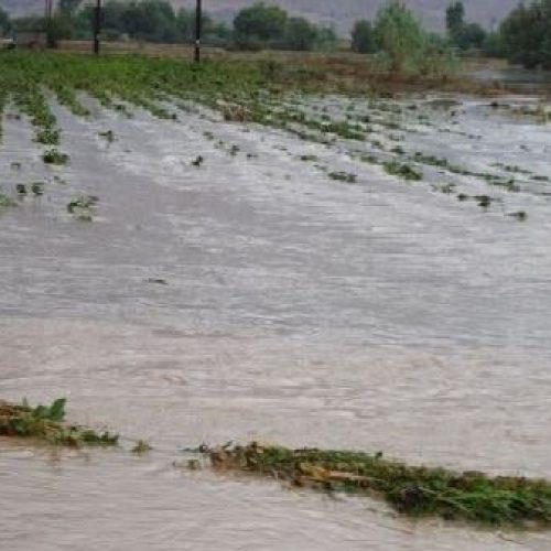 """Ανακοίνωση για την υποβολή αιτήσεων χορήγησης ενίσχυσης κοε  """"πλημμύρες 2014-2015"""""""