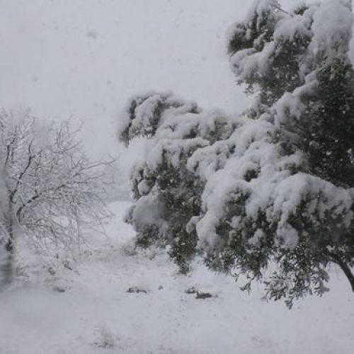 Έκτακτο Δελτίο Επιδείνωσης Καιρού  - Πρόβλεψη για πυκνές χιονοπτώσεις και σε ημιορεινές περιοχές