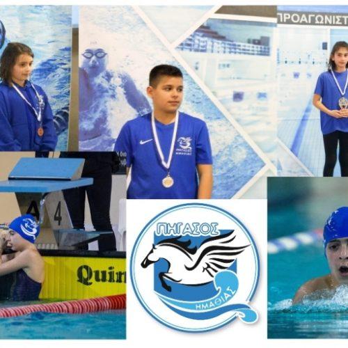 Εξαιρετική εμφάνιση του Πήγασου στους 9ους Πτολεμαϊκούς Αγώνες κολύμβησης