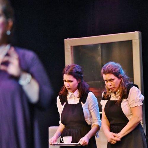 """Εβδομάδα Θεάτρου: """"Οι Δούλες"""" στην Αντωνιάδειο Στέγη, Πέμπτη 27 Μαρτίου"""