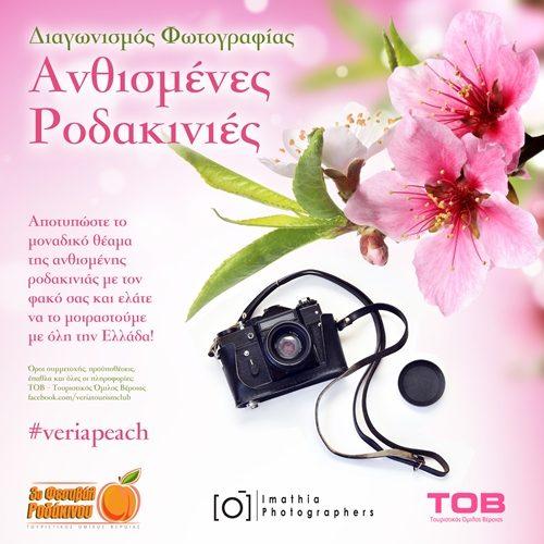 """Διαγωνισμός Φωτογραφίας: """"Ανθισμένες Ροδακινιές"""""""