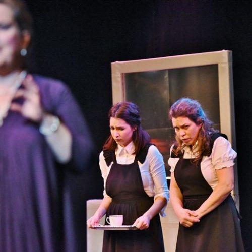 """Εβδομάδα Θεάτρου: """"Οι Δούλες"""" στην Αντωνιάδειο Στέγη, Πέμπτη 29 Μαρτίου"""