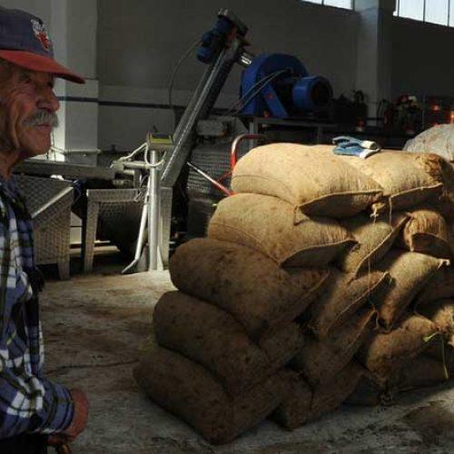 Οι αλλαγές  για την απασχόληση συνταξιούχων λόγω γήρατος