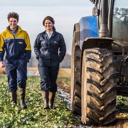 """Π.Ε. Ημαθίας: Υποβολή προτάσεων για το πρόγραμμα """"στήριξη για επενδύσεις σε γεωργικές εκμεταλλεύσεις - σχέδια βελτίωσης"""""""