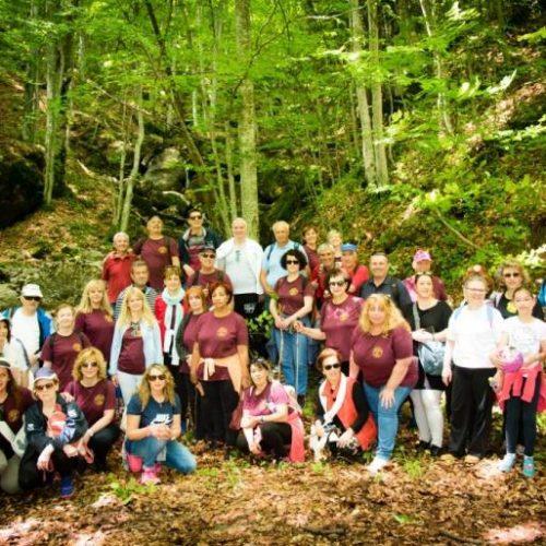 """Εξόρμηση στο δάσος  """"Κανέλλη"""" στη Νάουσα"""