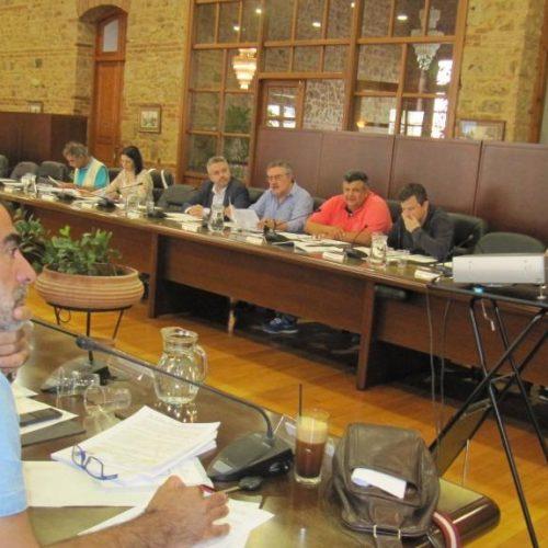 Το Δημοτικό Συμβούλιο Βέροιας καταδίκασε με ψήφισμα τη βία  στην περίπτωση Μπουτάρη