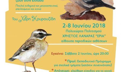 """""""Η Πολιτεία των Πουλιών"""" έκθεση ζωγραφικής του Χάρη Κουρουζίδη από τον Όμιλο """"Αράπιτσα"""""""