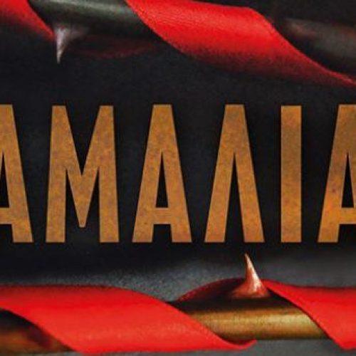 """Παρουσίαση βιβλίου στη Βέροια.  Σπύρου Πετρουλάκη """"Αμαλία"""""""