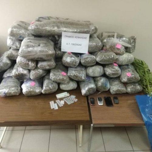 Στοχευμένες δράσεις στην Κ. Μακεδονία κατά της διακίνησης ναρκωτικών - Κατασχέθηκαν πάνω από 100 κιλά κάνναβη