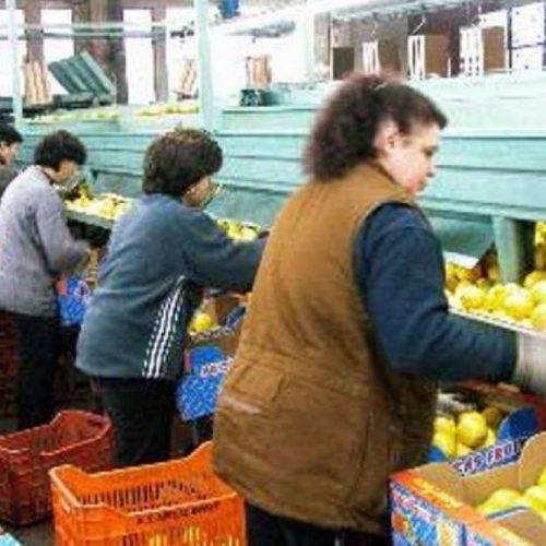 Ανακοίνωση του νέου ΔΣ του  Συνδικάτου Γάλακτος Τροφίμων & Ποτών Ημαθίας – Πέλλας. Τα ονόματα των μελών του νέου ΔΣ