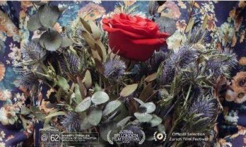 """ΚΕΠΑ Δ. Βέροιας: """"Θερινό Σινεμά"""" στο πάρκο - """"Λουλούδια"""" , Τρίτη 17 Ιουλίου"""