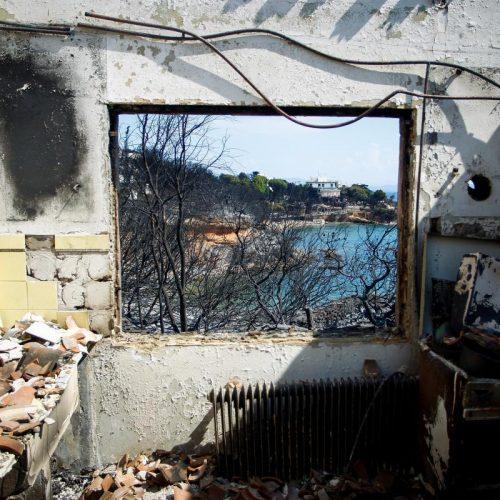 Εθνική τραγωδία: 85 οι νεκροί και τεράστια καταστροφή στο οικοσύστημα (Photo - Video)
