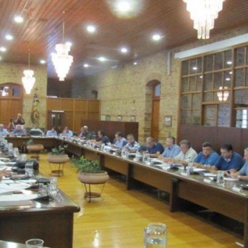 Η εθνική τραγωδία της πύρινης λαίλαπας στο Δημοτικό Συμβούλιο Βέροιας