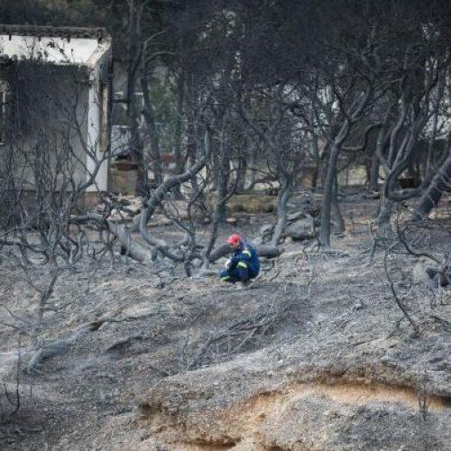 Ανακοίνωση του  ΚΚΕ  για τις καταστροφικές πυρκαγιές