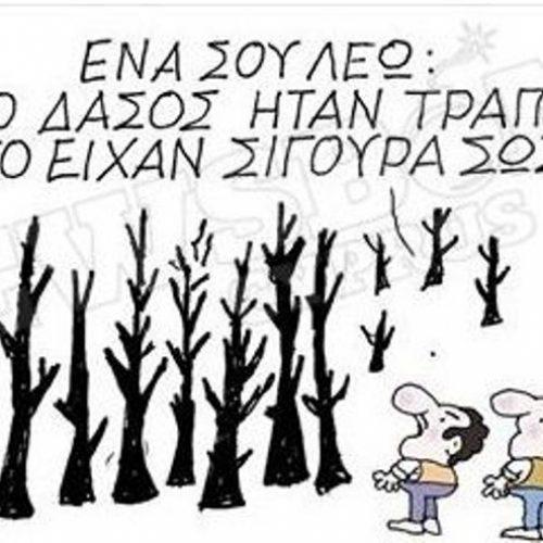 """Οι γελοιογράφοι σχολιάζουν: """"Τα καμένα δάση και οι...  τράπεζες"""" -  Γιώργος Μιτίδης"""