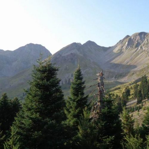 Μια αξέχαστη εμπειρία στο δύσβατο ορεινό όγκο των Θεσσαλικών Άγραφων  (μέρος Β΄)