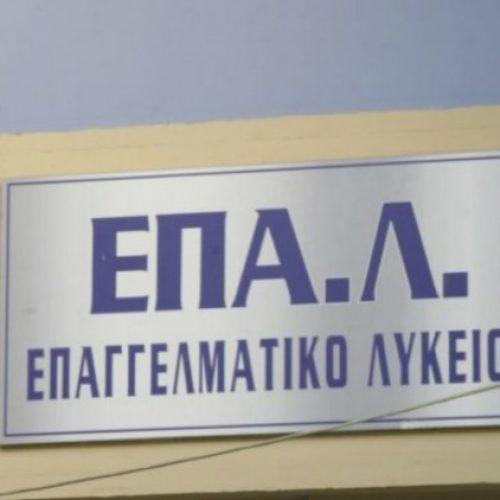 Καταγγελία για τη μη λειτουργία τμήματος πληροφορικής στο ΕΠΑΛ Νάουσας