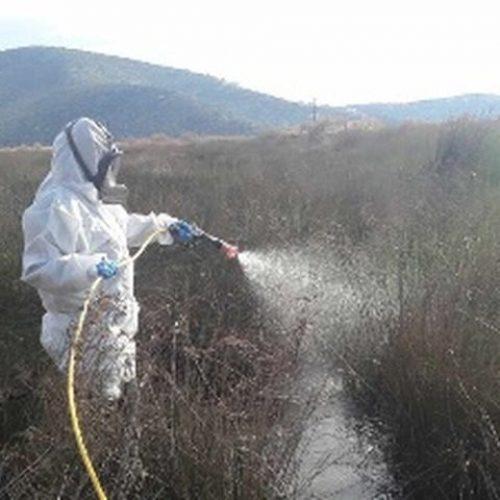 Ψεκασμοί απόψε το βράδυ για τα κουνούπια στην περιοχή Αγίας Μαρίνας