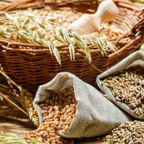 Αλεύρι Ζέας. Μια νέα τροφή από την αρχαιότητα