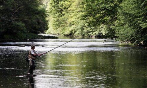 Υπενθύμιση για την απαγόρευση αλιείας πέστροφας
