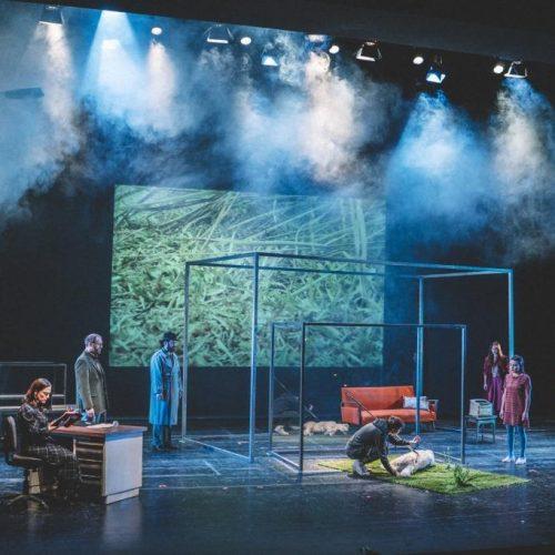 """ΚΘΒΕ: Βαθιά συγκίνηση και ενθουσιασμός  στην πρεμιέρα της παράστασης της Νεανικής Σκηνής  """"Ποιος σκότωσε το σκύλο τα μεσάνυκτα"""""""