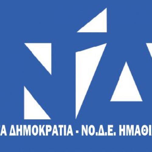 ΝΟΔΕ Ημαθίας: Δηλώσεις για συμμετοχή ως παρατηρητές στο  12ο Τακτικό Συνέδριο της ΝΔ
