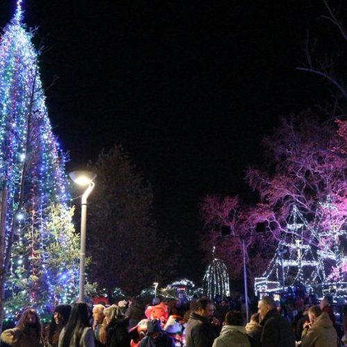Σε πανηγυρική ατμόσφαιρα άναψε το Χριστουγεννιάτικο Δέντρο στην Πλατεία της Ελιάς