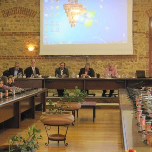 Για δεύτερη χρονιά συνεδρίασε το Δημοτικό Συμβούλιων Παίδων στη Βέροια – Μαθητικές διαπιστώσεις και προτάσεις