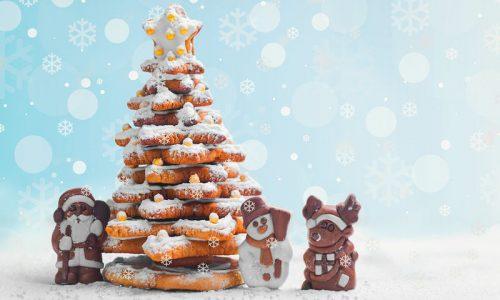 """Πολιτιστικός Σύλλογος Βεργίνας """"ΑΙΓΕΣ"""": Χριστούγεννα στη Βεργίνα"""