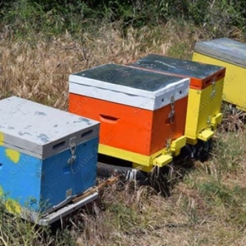 Π.Ε. Ημαθίας: Μέχρι τις 21 Ιανουαρίου 2019 οι αιτήσεις για αντικατάσταση κυψελών και στήριξης της νομαδικής μελισσοκομίας