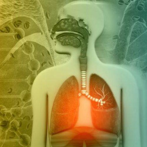 """Κάπνισμα. Οι τροφές που """"καθαρίζουν"""" τους πνεύμονες από τη νικοτίνη"""