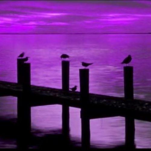 """Νυχτερινός απόπλους: Yasmin Levy   """"Una Noche Mas"""""""