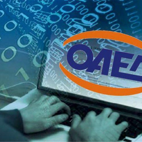 ΟΑΕΔ: Οκτώ νέα προγράμματα για 42.933 θέσεις εργασίας μέχρι τον Μάιο