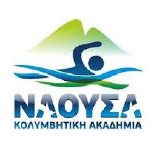 """Πρόσκληση στην κοπή της βασιλόπιτας από την Κολυμβητική Ακαδημία """"Νάουσα"""""""
