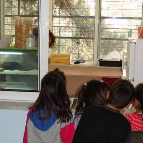ΕΦΕΤ:  Ποια   τρόφιμα    επιτρέπονται  και  ποια απαγορεύονται στα σχολικά κυλικεία