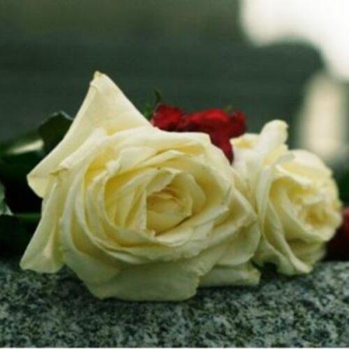 """Συλλυπητήριο του ΕΠΑΛ Βέροιας για την """"απώλεια"""" του Βασίλη Τραπέρα"""